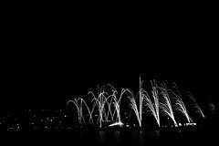 Grand feu des fêtes de Genève (niji graphein) Tags: summer switzerland geneva fireworks genève 2012 feudartifice genf fêtesdegenève grandfeu
