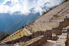 Machu Picchu-97