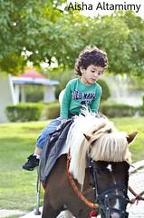 Little Knight :* (Aisha Altamimy) Tags: city winter horse baby sunlight art kids fun entertainment knight kuwait kuwaitcity dayout horseride الكويت طفل حصان nikond7000 aishaaltamimy المدينةالترفيهية