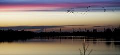 Abendstimmung im Moor (Jens Schulte) Tags: sunset sonnenuntergang moor gros hesper hesepe moormuseum heseper