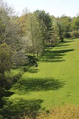 116#72 Shadows (Pat's_photos) Tags: shadow tree fence westonbirt hff 11672