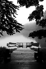 *** (Misha Sokolnikov) Tags: leica blackandwhite lake blancoynegro monochrome rain fog 50mm mono noiretblanc montenegro biogradskagora blackwhitephotos biogradskojezero leicamonochrom