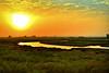 Marismas. Punta del Moral (Huelva) (Angela Garcia C) Tags: marisma paisaje relieve orografía vegetaciónderibera nubes puntadelmoral huelva vegetación hidrología geografíafísica
