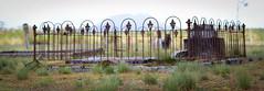 Waratah Cemetery, Tasmania (paulledger81) Tags: tasmania waratah australia cemetery burial