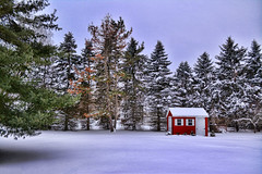 Fresh Snow on a Red Shed (Trotter Jay) Tags: winter red shed scenic newengland snowfall pinetrees colorred winterscene redshed