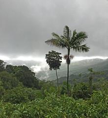 2016-06-02 13.34.19 (WoodysWorldTV) Tags: travel tourism tropical sanjuan puertorico territory