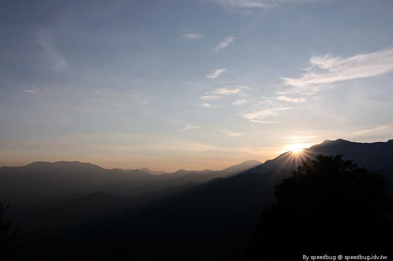 阿里山櫻花季15