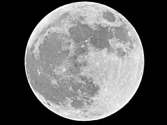 Flower Moon / Full Moon  2012 - May 5, 2012 (spacemike) Tags: sky moon mare charlotte space northcarolina luna fullmoon craters crater astrophotography astronomy nightsky charlottenc lunar charlottenorthcarolina mayfullmoon maymoon astromike flowermoon sx30 supermoon sx30is spacemike
