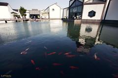 Suzhou Museum (Jingtian Lv) Tags: museum architecture suzhou angle wide  1635