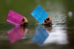 Régate Flickr 2012 (NUMERIK33) Tags: water rain boat eau flickr cyan magenta pluie bateaux explore bateau voile noix régate numerik33