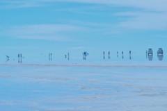 Uyuni salt lake V (+ n9ne +) Tags: bolivia casio hdr uyuni exzr100