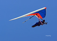 Jason Boehm (Ron1535) Tags: wing sail roll pitch soaring glider pilot hangglider thermals deltaplane yaw rigidwing airframe freeflying freeflight gliderpilot freeflyer variometer windcurrents hanggliderpilot flexiblewing glideraircraft soaringaircraft