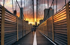 Tag You're It (DPGold Photos) Tags: nyc bridge sunset sun ny newyork skyline brooklyn cityscape manhattan tag brooklynbridge