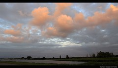 pink cumulus 2 (raymondklaassen) Tags: zonsondergang cumulus flevoland oostvaardersdijk