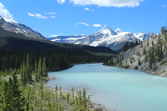 North Saskatchewan River (Cole Chase Photography) Tags: summer canada mountains canon jasper alberta banff albertacanada northsaskatchewanriver banffnationalpark t3i saskatchewanriver icefieldsparkway