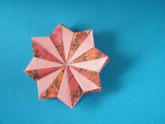 Sternblüte - Carmen Sprung