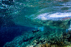 beneath the glass walls of beqa lagoon (SARA LEE) Tags: glass coral wall fiji surf underwater churchills wave massive reef frigates sarahlee beqalagoon pidot alisonsadventures ikaikapidot