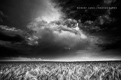 Storm clouds over wheat fields, black and white - Australia (Robert Lang Photography) Tags: sky blackandwhite storm clouds rural farm wheat farming australia southaustralia eyrepeninsula