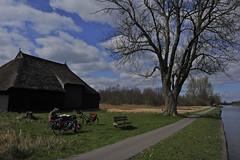 Friesland-33