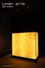 10 (lumen-arts) Tags: lighting landscape bahrain landscaping arts led posters portfolio designers lumen landscapers lightshop