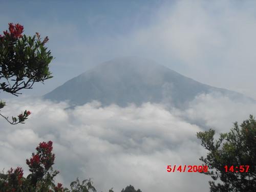 "Pengembaraan Sakuntala ank 26 Merbabu & Merapi 2014 • <a style=""font-size:0.8em;"" href=""http://www.flickr.com/photos/24767572@N00/26556848744/"" target=""_blank"">View on Flickr</a>"
