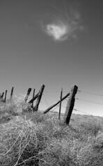Spirit In The Sky (nedlugr) Tags: california ca blackandwhite bw usa cloud fence spirit tumbleweeds fencepost kerncounty omot