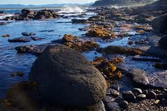Black rocks (Geoff Main) Tags: sea seascape coast australia nsw nswsouthcoast broulee canonef24105mmf4lisusm rockshelf brouleeisland canon6d