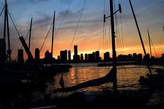sunset (greenelent) Tags: nyc light sunset sun newyork newjersey nj photoaday 365 sailboats