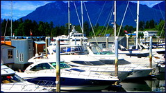 Boating beautiful British Columbia (> Pinoy) Tags: canon powershot photography canada canadain british columbia boats boating yacht yachting ocean oceans clubs fishing mountains mountain mountainous scapes tops sea scape colors blues beauty sailing sail boat cruiser speed contrasts ladybot