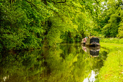 Dreamy Reflections (williamrandle) Tags: uk trees england plants plant tree green water reflections spring nikon outdoor dreamy serene barge 2016 narrowboats d7100 worcestershirestaffordshirecanal tamron2470f28vc outdoorlandscapetowpath