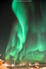 DSC_7461s (savillent) Tags: world road travel pink blue winter red sky snow canada black cold green ice nature acdc night dark stars landscape francis photography lights nikon neon skies nocturnal purple northwest nt alien north dream may nwt ufo arctic anderson freeze aurora mysterious change polar northern universe floyd lunar nocturne climate astrology territories xfiles borealis discover pingo 2016 tuktoyaktuk savillent