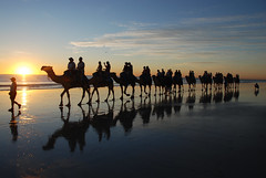 Cable beach reedit (Tartarin2009) Tags: travel sunset sea seascape reflection beach water nikon memories silhouettes australia camel caravan camels broome waterscape tartarin2009 cablebeachreedit