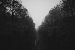 On Down The Track (Dan Constien) Tags: railroad travel trees blackandwhite fog train tracks transportation quest kerouac jackkerouac madisonwisconsin railroadtracks converginglines bigworld findingyourself vsco danconstien
