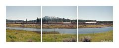 Locomotives in Portola (Daiku_San) Tags: film mediumformat triptych ishootfilm hasselblad500cm usetheforce colorfilm kodakektar100 epsonv500 carlzeissplanarct8028