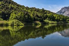 valle dei laghi 160508_079 (gmcvrphoto) Tags: alberi lago corso acqua riflessi montagna paesaggio trentino toblino collina bosco dacqua allaperto
