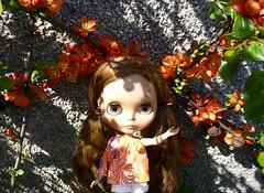 A Sunny Day! (Bebopgirl1969) Tags: blythe quince manuhealiiparadisegirl
