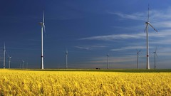 Harvesting in three dimensions (ramerk_de) Tags: bavaria energy hdr umwelt windcraft environmentalhealth upperpalatinate