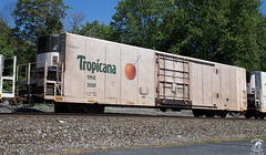 TPIX 3001 (DCR - Black Sheep Photography) Tags: juice transportation pepsi tropicana pepsico reefer emmaus rollingstock 070 tpix
