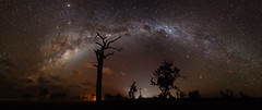 Milky Way at Kev's Paddock (Falke in Oz) Tags: night way photography harbour nsw milky coffs