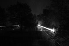 It was a dank and foggy evening... (RickDrew) Tags: road street trees light mist tree rain misty fog night dark lights evening illinois oak pavement lawn foggy il rays streaks beams damp dank