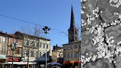 Limoux, quel Carnaval ! What a Carnival ! (Discover Carcassonne & tous les Trésors de l'Aude) Tags: carnival france south carnaval aude carcassonne languedoc sud limoux carnavaldelimoux