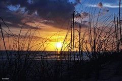 Sunset on Manatee Beach (BGDL) Tags: sunset florida annamariaisland manateebeach nikond7000 recordingimages