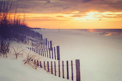 Happy Fence Friday {Beach Week} Edition! (pixelmama) Tags: sunrise florida tgif pensacolabeach beachfence gulfislandsnationalseashore hff eightdaysaweek chasinglight fencefriday