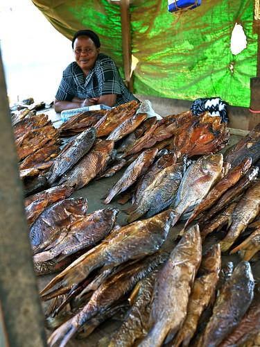 An artisanal fish processor sells smoked and fried Tilapia and Nile Perch in the market, Uganda. Photo by C. Finegold, 2011