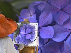 Mi sarebbe piaciuto... (anton) Tags: sardegna fotografia fiori sassari ortensie dipinto pittrice anton rememberthatmomentlevel1 rememberthatmomentlevel2