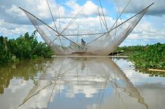 Netted (amirjina) Tags: sky fish reflection net fisherman asia flood south flash bamboo disaster sylhet bangladesh wetland 2012 haor srimongal moulvibazar igc subsistence livelihood sreemongal sreemanga