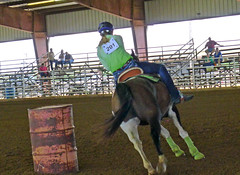 7-17 Barrel 201 (uacescomm) Tags: arkansas searcyarkansas whitecountyfairgrounds 2012arkansasstate4hhorseshow