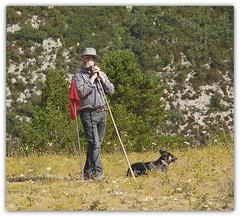 1254 Concurso de perros de pastor - Concurs de gossos d'atura (Ricard Gabarrús) Tags: natura can perro be ganado perros montaña pastor gos oveja ovejas rebaño gossos aniamal ricardgabarrus
