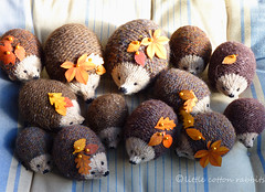 hedgies (littlecottonrabbits) Tags: autumn animal toy handmade softies hedgehog pincushion knitted stuffies handknitting
