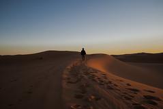 _DSC0210 (deborahmocci) Tags: africa people sahara village desert market south palm morocco arabian kasbah